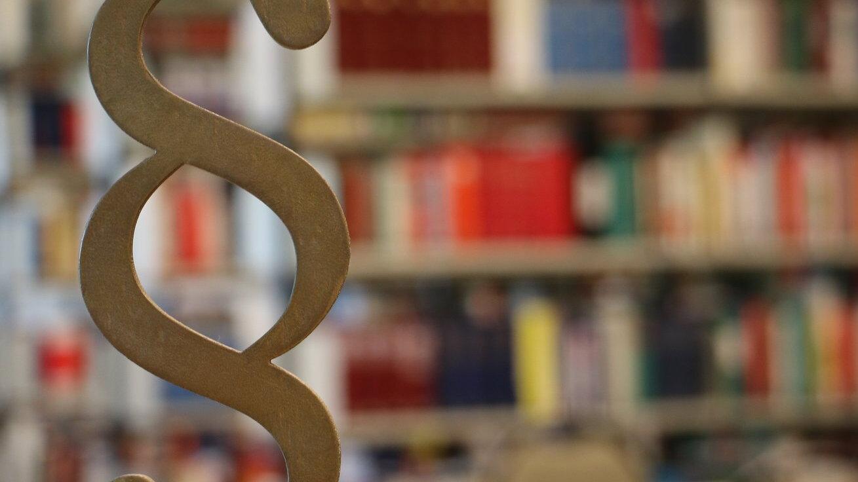 Paragraphenzeichen im vordergrund vor einem unschaf abgebildeten gefüllten Bücherregal